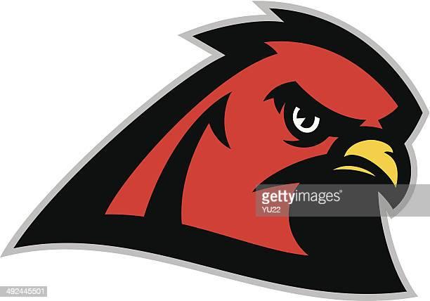 hawk head - falcons stock illustrations, clip art, cartoons, & icons