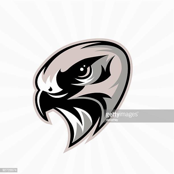 hawk mascot - falcons stock illustrations, clip art, cartoons, & icons
