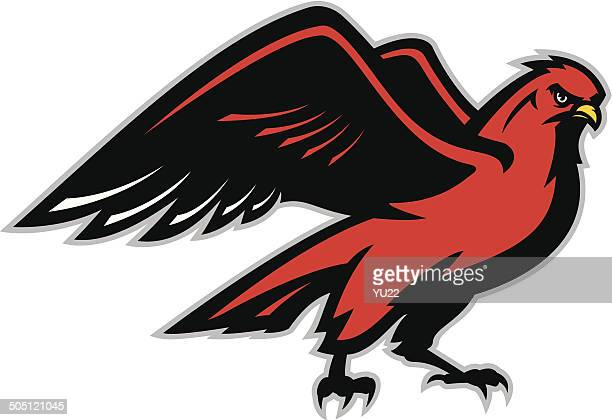 hawk - falcon bird stock illustrations, clip art, cartoons, & icons