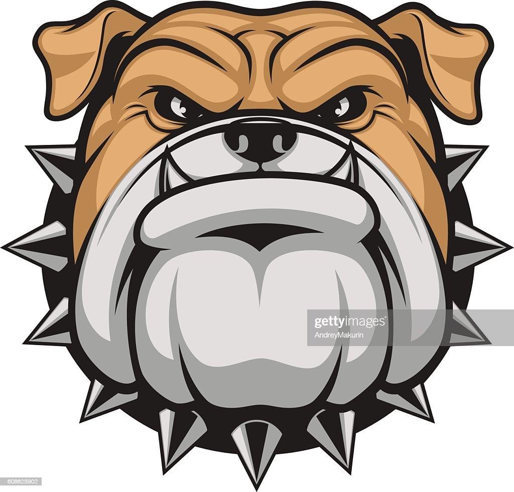 Head ferocious bulldog