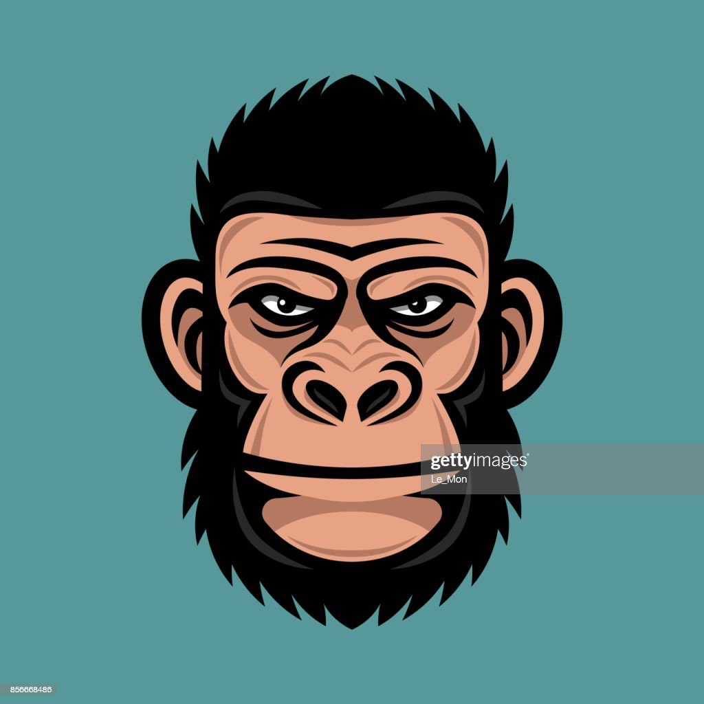 Head monkey illustration