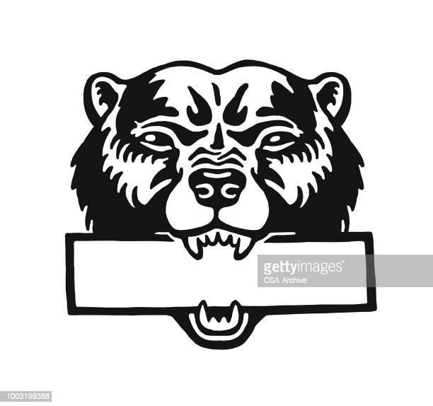 illustrations, cliparts, dessins animés et icônes de tête d'ours - un seul animal