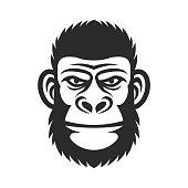 Head of a monkey. Wicked gorilla. Primacy illustration