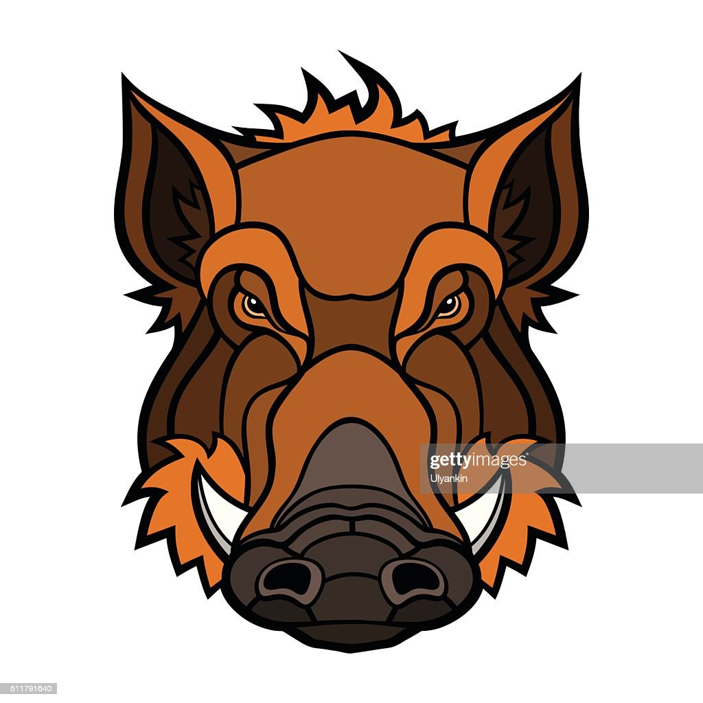 Head of boar mascot color design