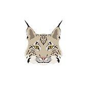 Head of lynx isolated on white background. Mascot symbol. Vector illustration.