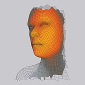 Head of the Person from a 3d Grid. Vector Illustration.