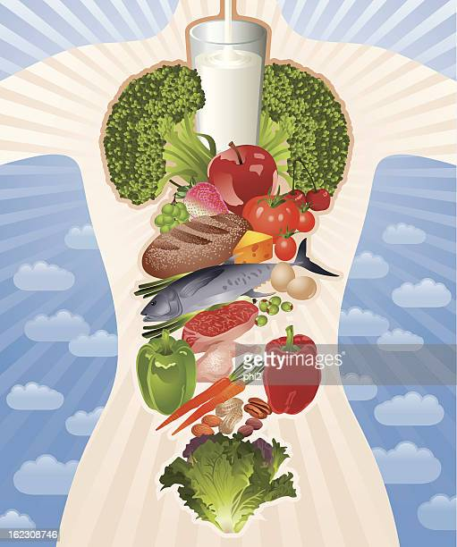 healthy body composed by healthy food vector - healthy eating stock illustrations, clip art, cartoons, & icons