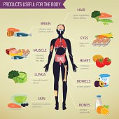 Healthy food for human body. Healthy eating infographic