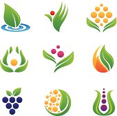 Healthy food logos and icons