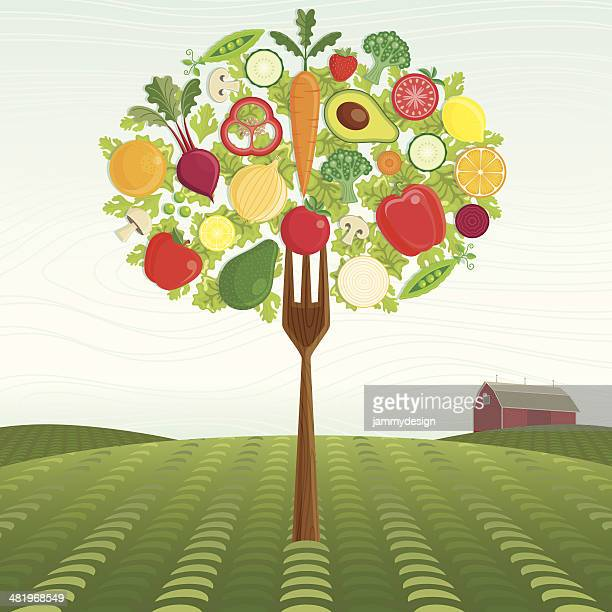 healthy harvest - dieting stock illustrations, clip art, cartoons, & icons