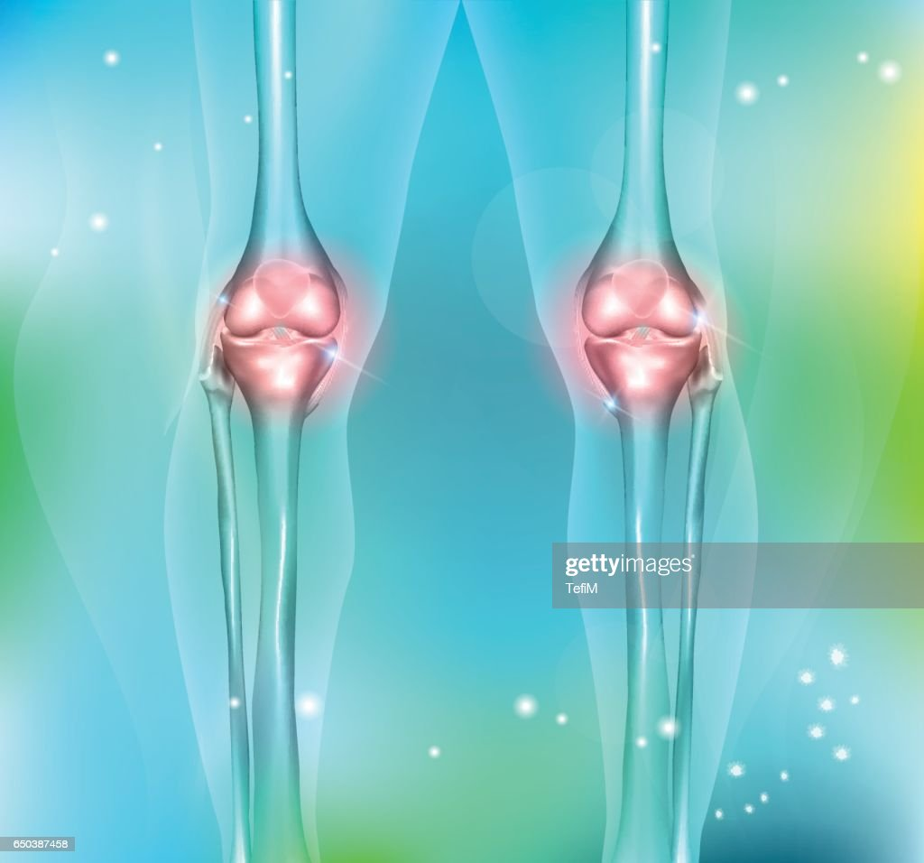 Healthy Human Leg Knee Joints Vector Art Getty Images