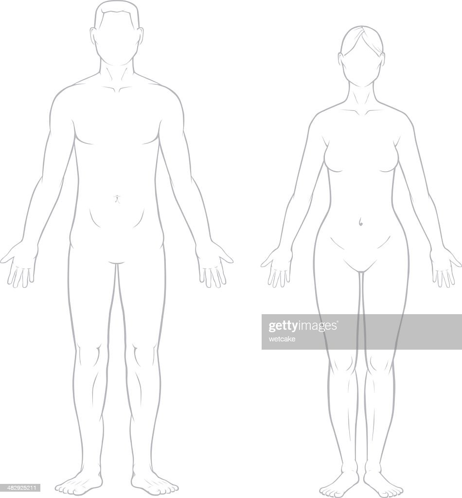 Healthy Male and Female Bodies : Stock Illustration