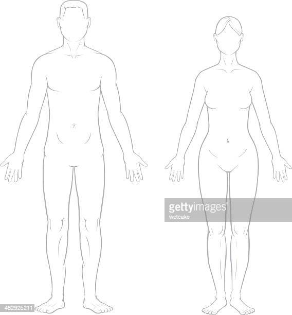 Healthy Male and Female Bodies