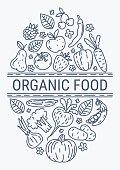 Healthy Organic eco vegetarian food design vector template