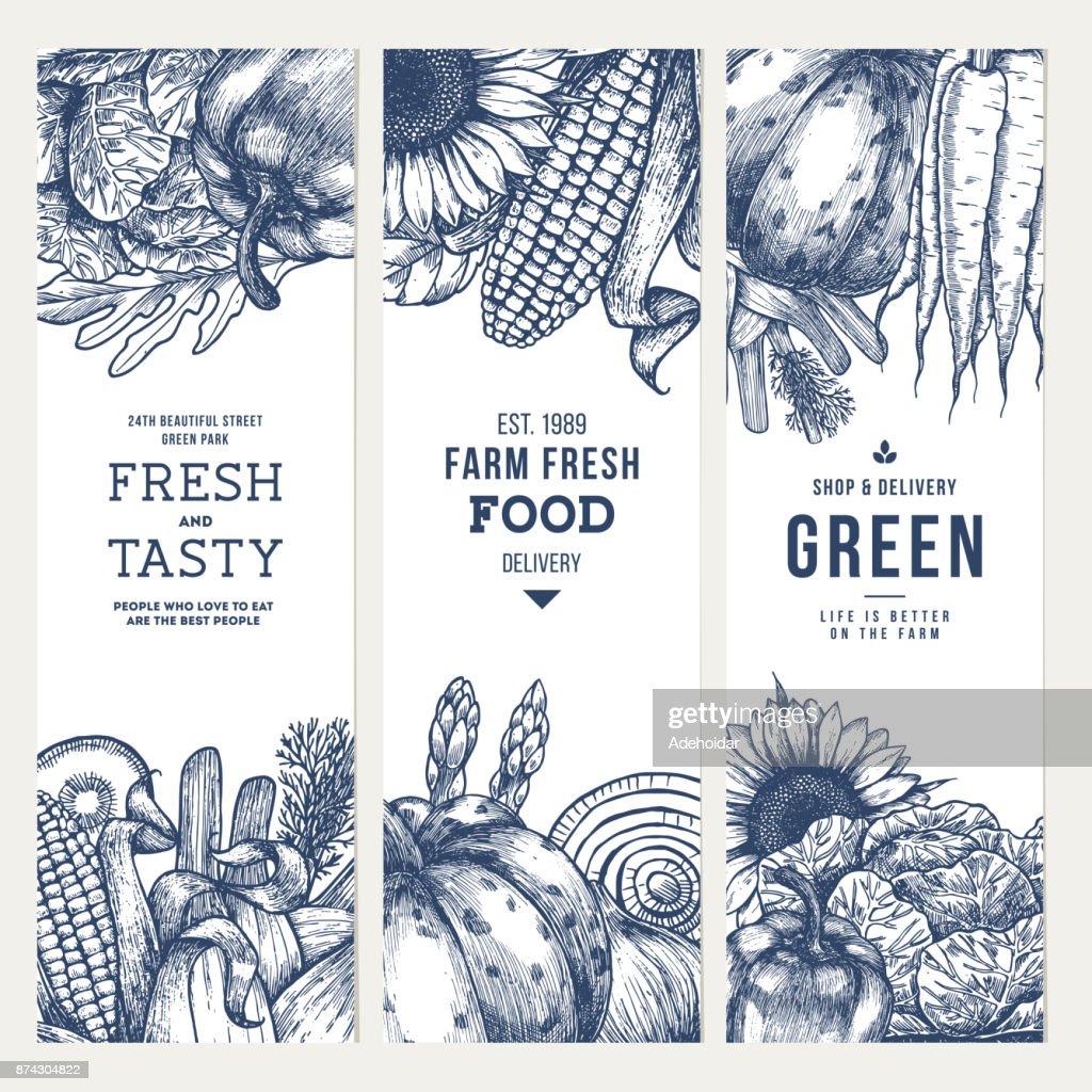Healthy organic food vertical  engraved banner collection. Fresh vegetables design template. Vector illustration