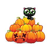 Heap of Halloween Pumpkins with a Black Cat on it