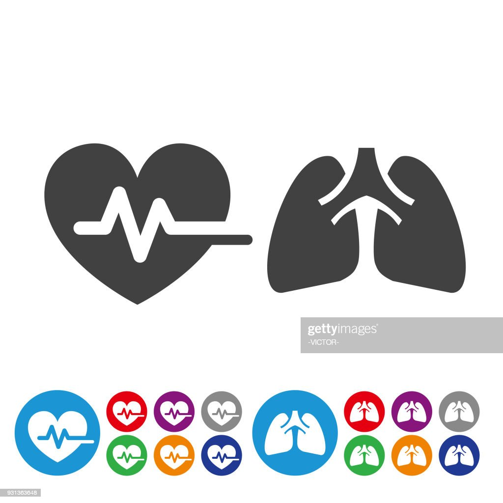 Heart and Lung Icons - Graphic Icon Series