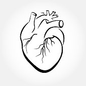 Heart drawings vector.
