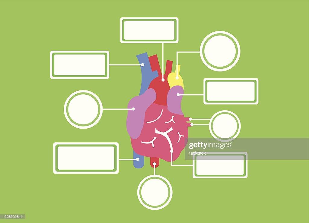 Sistema de coração-vector Urso : Arte vetorial