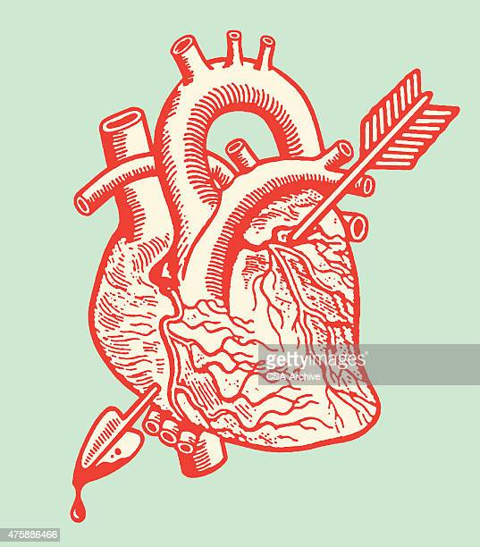 stockillustraties, clipart, cartoons en iconen met heart with arrow - cupidon