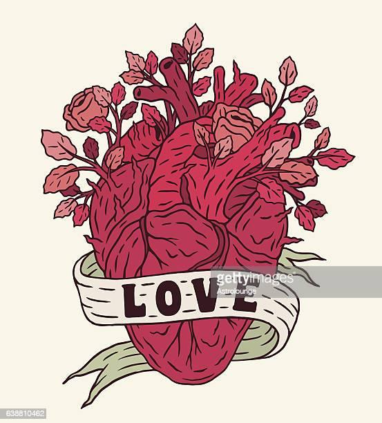 illustrations, cliparts, dessins animés et icônes de cœur avec roses - coeur humain