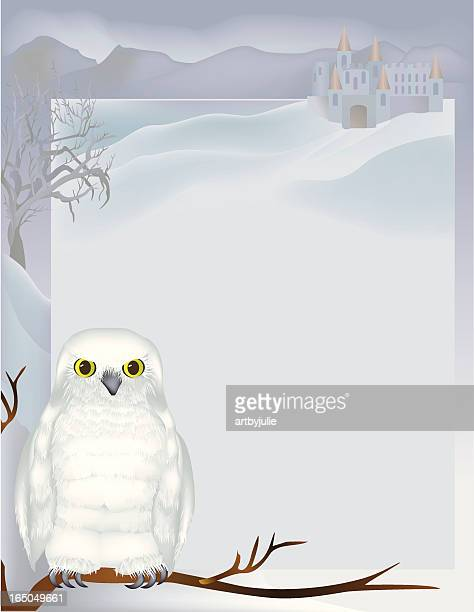 hedwig and castle - snowy owl stock illustrations