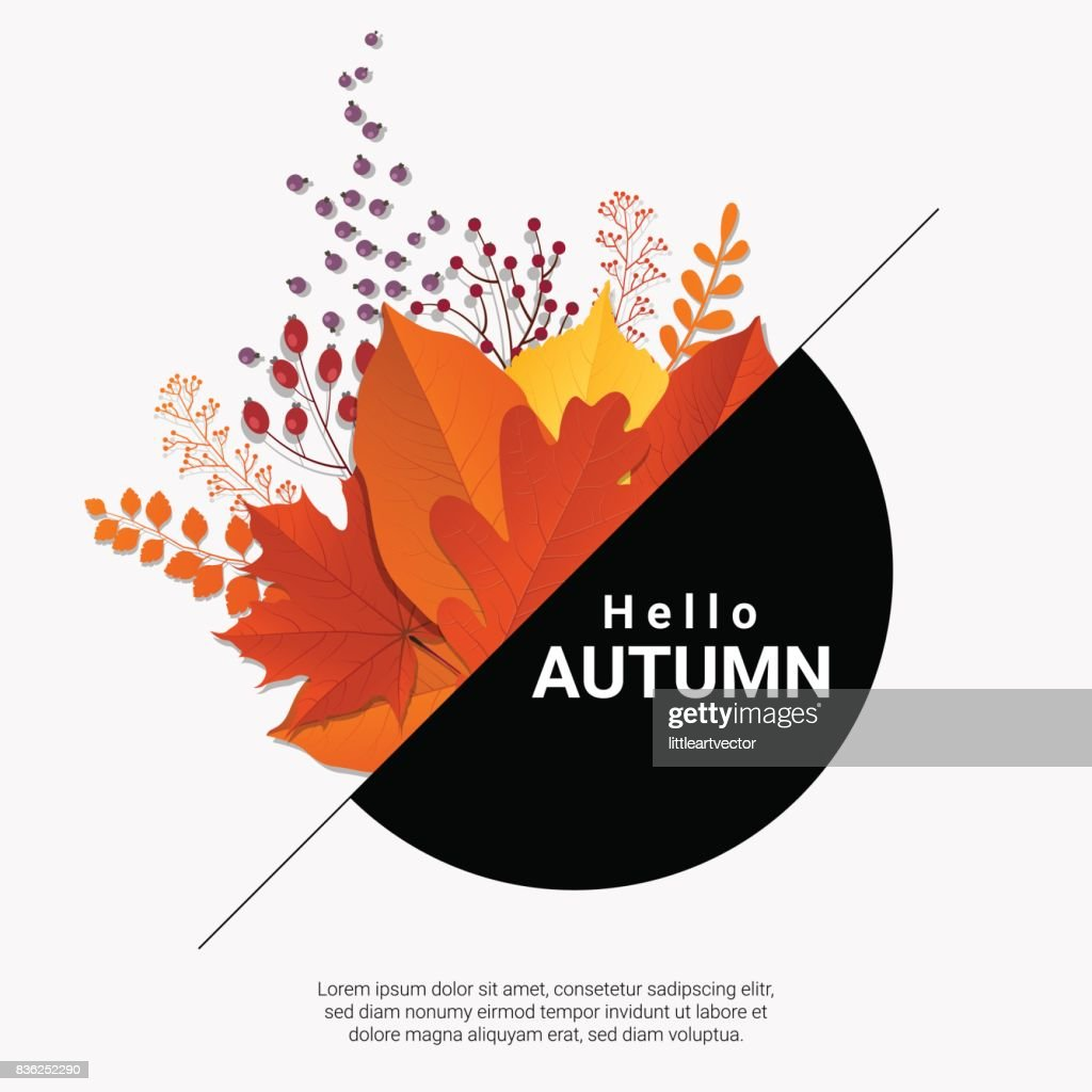 Hello autumn with modern colorful leaves and fruits background , vector , illustration