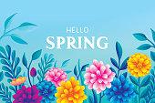 Hello blooming spring flowers