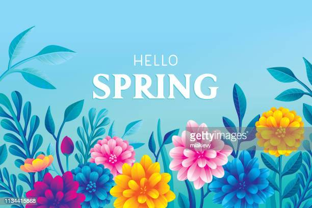 hello blooming spring flowers - springtime stock illustrations