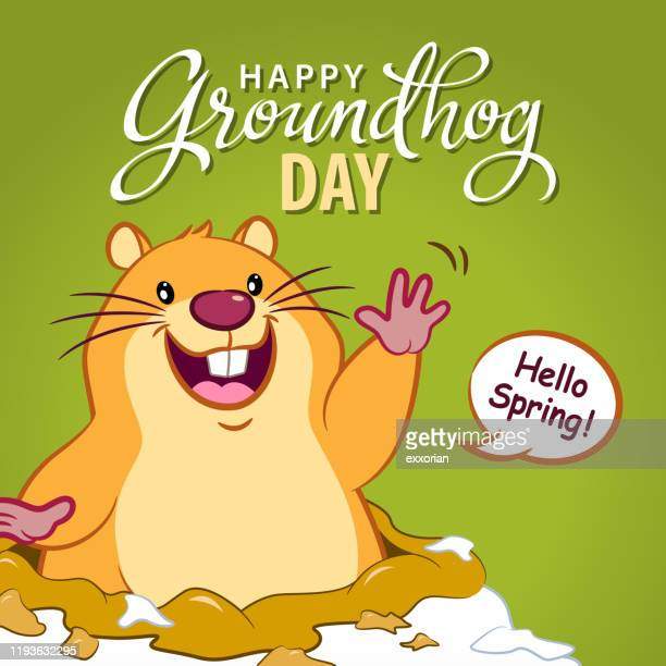 hello spring groundhog day - groundhog day stock illustrations