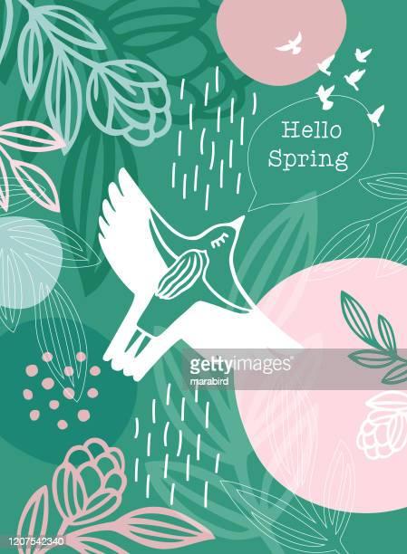 hello spring message white bird woman - bird stock illustrations
