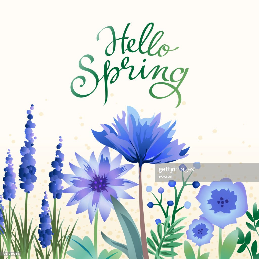Hello Spring Purple Flowers Vector Art Getty Images