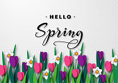 Hello Spring seasonal greeting banner.