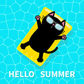 Hello Summer. Swimming pool. Black cat floating on yellow pool float water mattress. Top air view. Sunglasses. Lifebuoy. Cute cartoon relaxing character. Flat design.