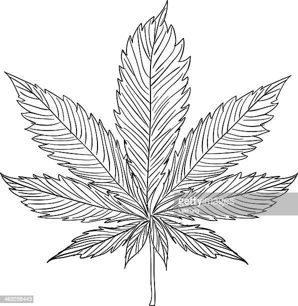 Hemp illustration in black and white