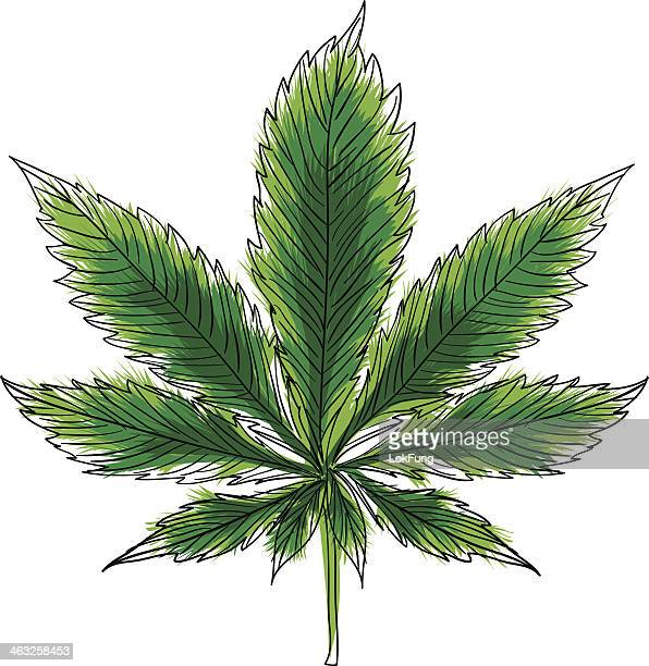 hemp illustration in color - cannabis narcotic stock illustrations, clip art, cartoons, & icons