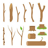 Hemp, logs, branches and sticks of forest trees. Vector illustration