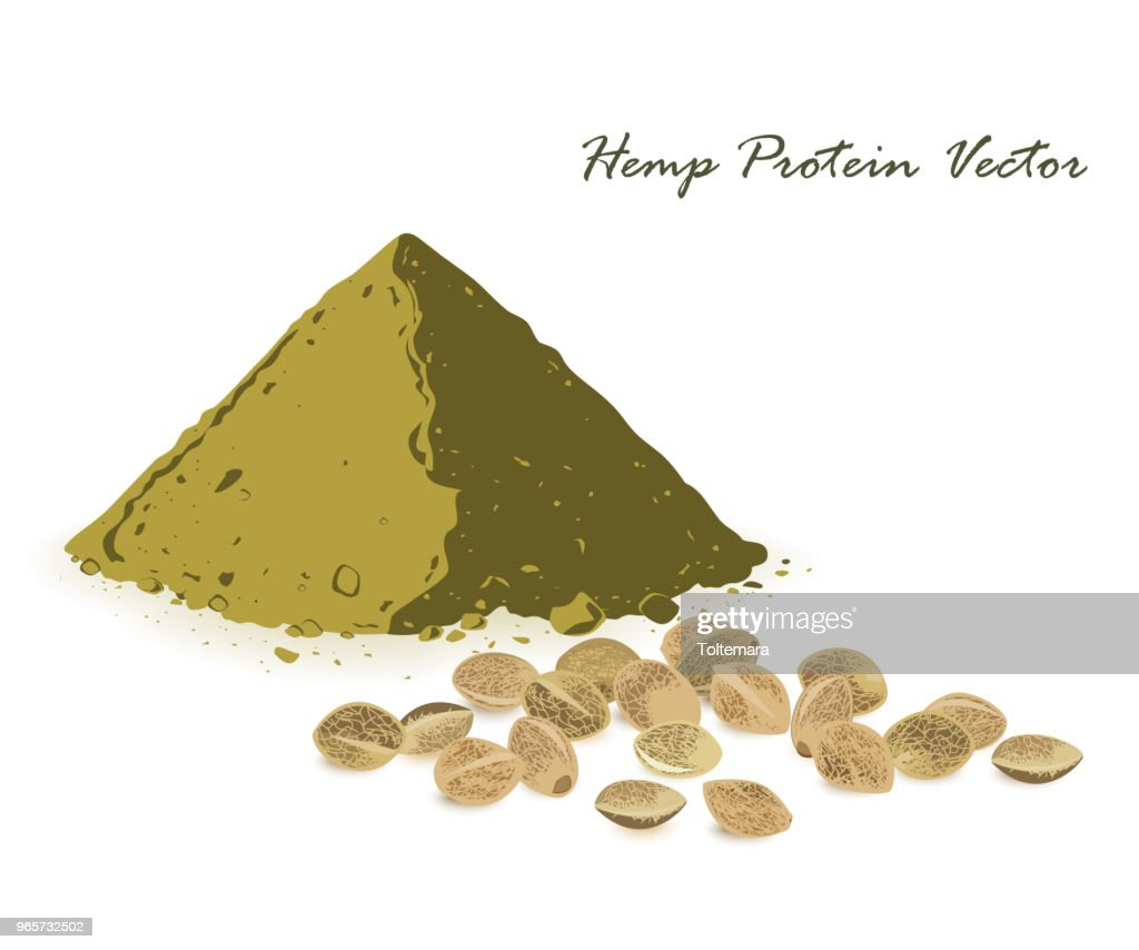 Hemp protein amd hemp seeds isolated on white.