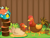 Hen and a rooster beside the bird house