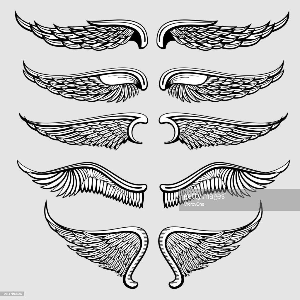 Heraldic bird, angel wings vector set