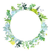 Herbal mix vector round frame.