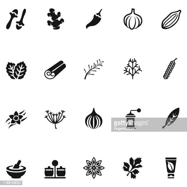 herbs and spices icon set - herbal medicine stock illustrations