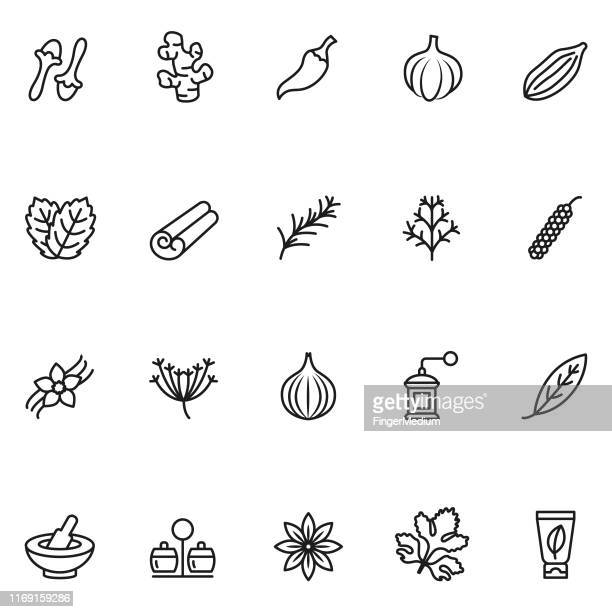 herbs and spices icons - anise stock illustrations
