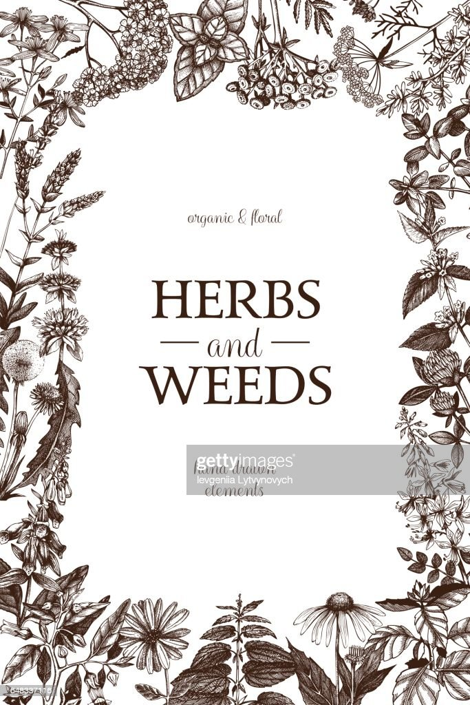 Herbs and weeds design