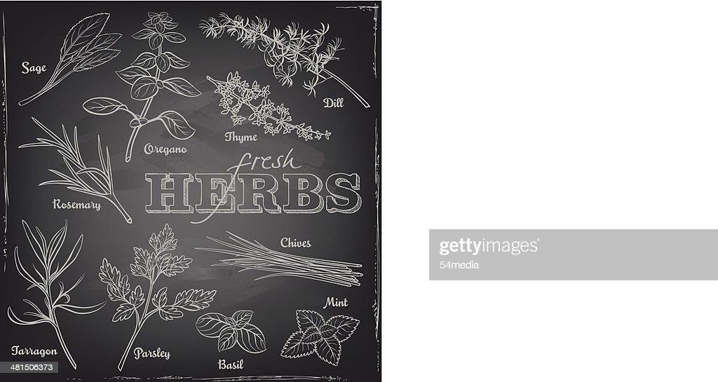herbs set on a blackboard