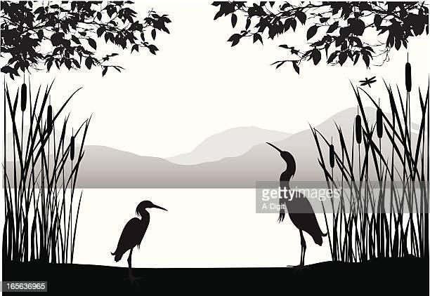Herons' Habitat Vector Silhouette