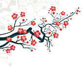 Сherry blossoms background - spring japanese symbol