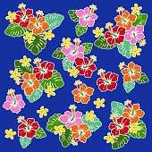 Hibiscus flower illustration,