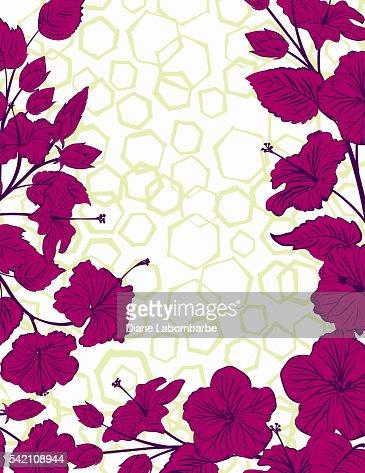 Hibiskus Blumenrahmen Mit Sechseckigen Muster Hintergrund ...