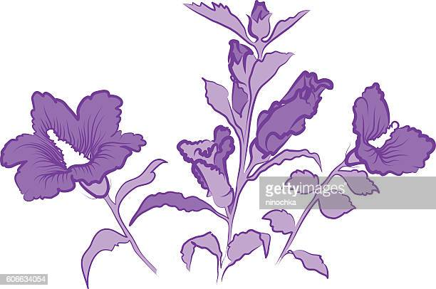 hibiscus flowers - plant attribute stock illustrations, clip art, cartoons, & icons